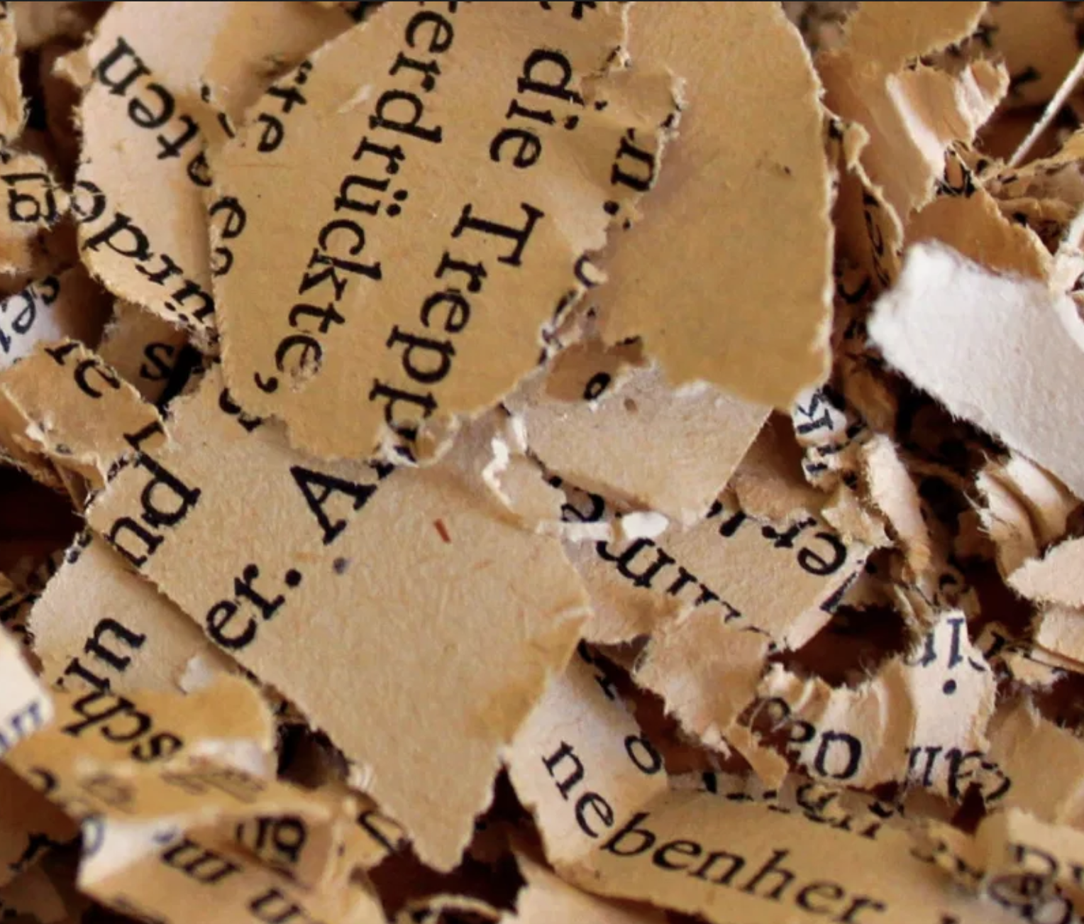 Beitrag zum gesellschaftlichen Auftrag von Kultur und dem Verhältnis zwischen Politik und Lyrik